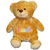 personalized teddy bear in pastel colors