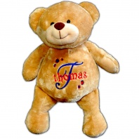 personalized teddy bear in primary dots