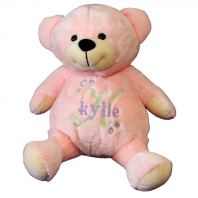 personalized pink teddy bear with intial